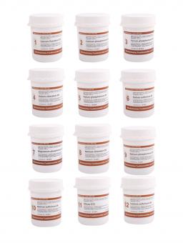 Dr. Schüssler-salts set 4